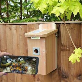 Bird Box System