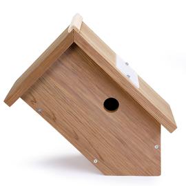 Camera Bird Box