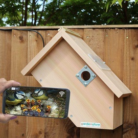 Camera Bird Box 2