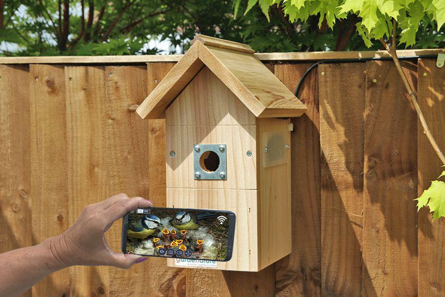 IP Camera Bird Box